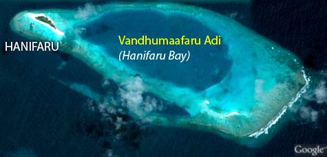 Snorkeling at Hanifaru Bay